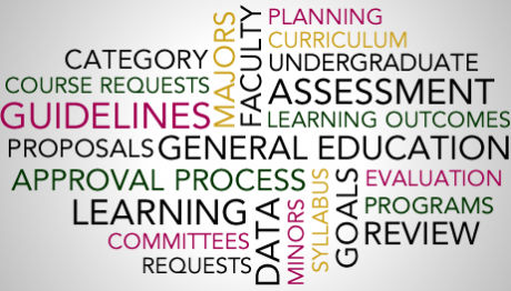 Word collage pertaining to curriculum and assessment.